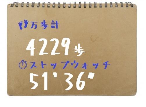 スケッチブック台紙 万歩計+SW 桐女